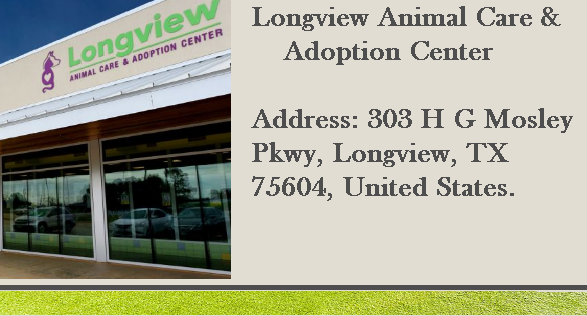 Longview Animal Care & Adoption center